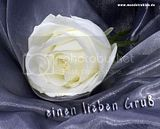 liebe gruesse-gbpic-21